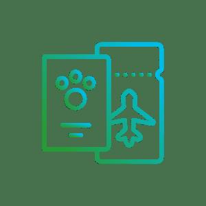 icon-servicii-Documentatie-pentru-calatorii