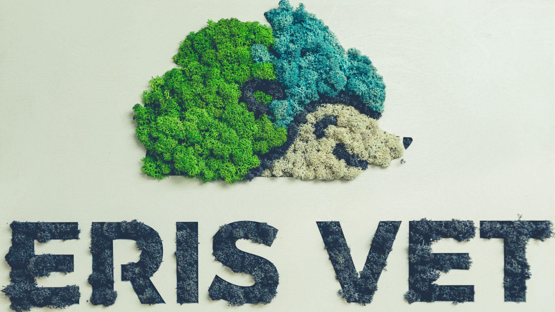 Noul cabinet Eris Vet logo